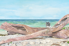 babys_driftwood_watercolor_cat_art.jpg