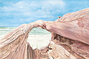 driftwood_view_watercolor.jpg